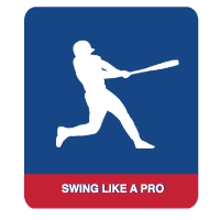Swing Like a Pro Hitting Product